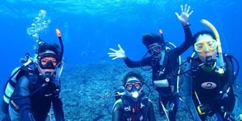 ダイビング中の写真