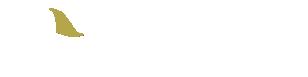 石垣島ダイビングサービスジーフリー